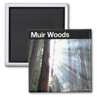 Muir Woods National Monument Refrigerator Magnet