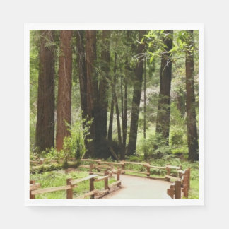 Muir Woods Path I Disposable Napkin