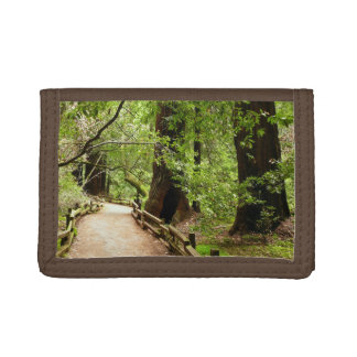 Muir Woods Path II Nature Photography Trifold Wallets