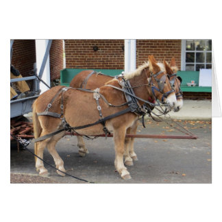 Mule Cart Card