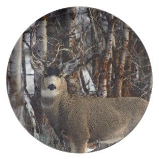 Mule deer buck dinner plate