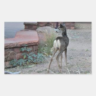 Mule Deer Fawn Zion National Park Sticker