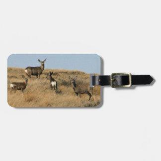 Mule Deer in South Dakota Luggage Tag