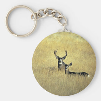 Mule Deer Keychain