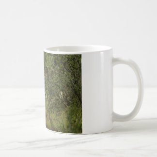 Mule Deer Raspberry Coffee Mug