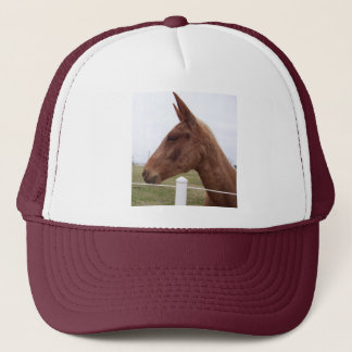 Mule-Headed Hat / Cap
