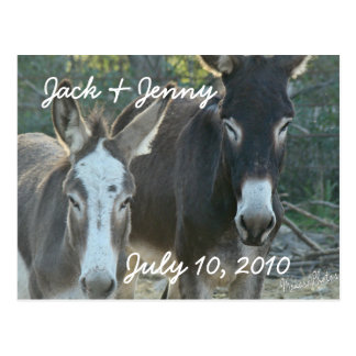 Mules-save the date-customize postcard