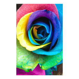 Mulit-Colored Rose by SnapDaddy, can Personalize! Personalized Stationery