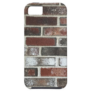 Multi color brick wall with reds, whites and brown case for the iPhone 5