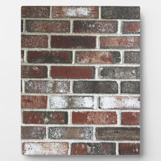 Multi color brick wall with reds, whites and brown plaque