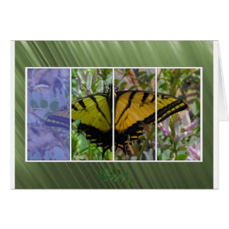 Multi Colored Butterfly Card