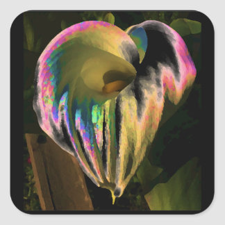 Multi-colored Calla Lily Square Sticker