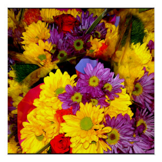 Multi Colored Daisy Flower Mix Poster Perfect Poster