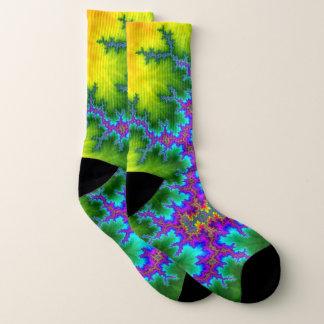 Multi colored fractal pattern socks