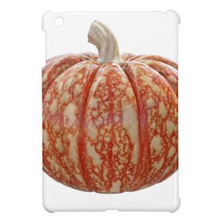 Multi Colored Pumpkin Cover For The iPad Mini