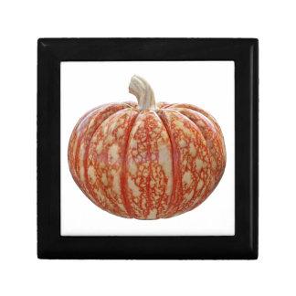 Multi Colored Pumpkin Gift Box