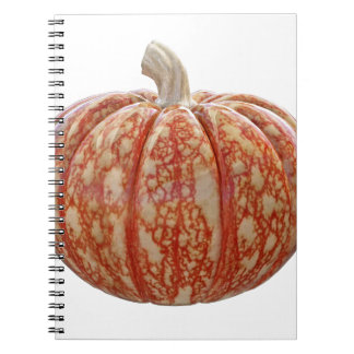 Multi Colored Pumpkin Spiral Notebook