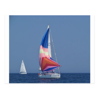 Multi Colored Spinnaker Postcard