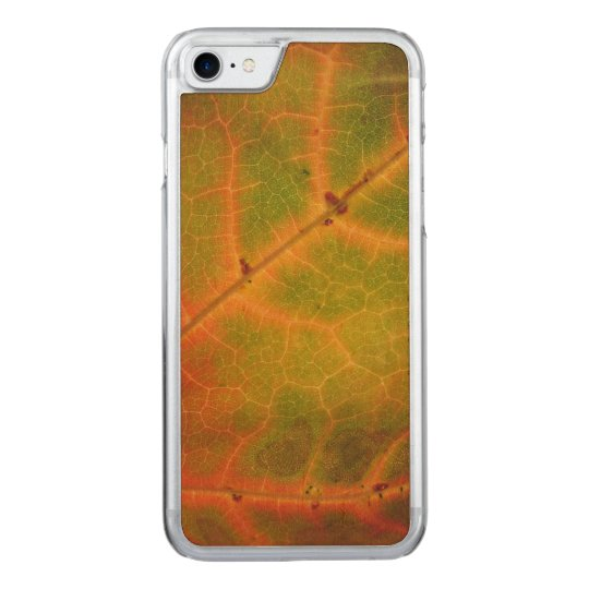Multi-colour Autumn Life | Wood iPhone 7 Case