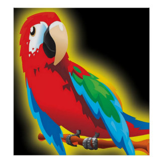 Multi Colour Parrot Poster