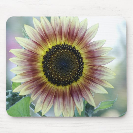 Multi-coloured Sunflower Mouse Pad