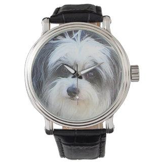 Multi-Poo Dog Watch