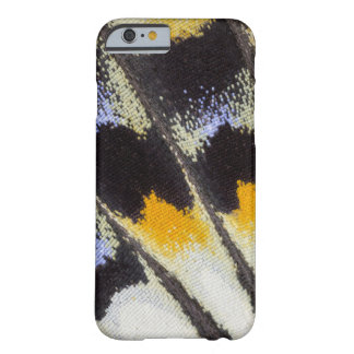 Multicolor butterfly wing pattern barely there iPhone 6 case
