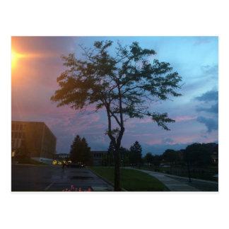 Multicolor Sunset Postcard