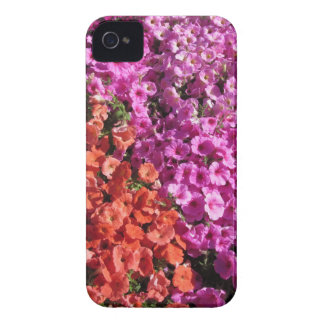 Multicolored petunia flowers texture background iPhone 4 case
