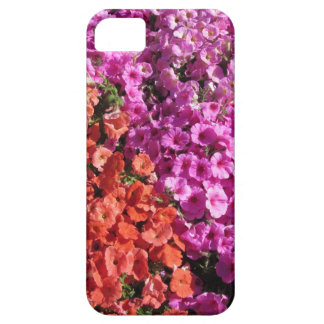 Multicolored petunia flowers texture background iPhone 5 case
