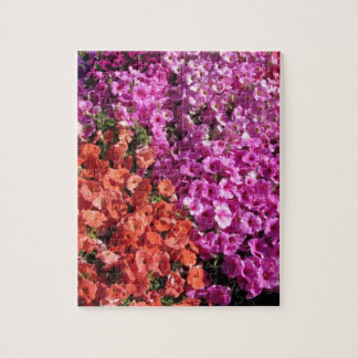 Multicolored petunia flowers texture background jigsaw puzzle