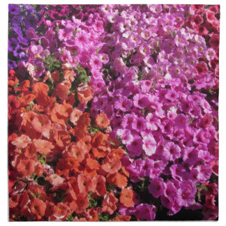 Multicolored petunia flowers texture background napkin