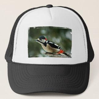 Multicolored woodpecker - Photography Jean Louis Trucker Hat