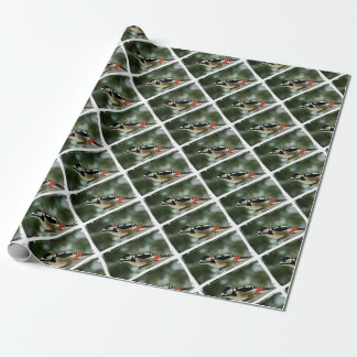 Multicolored woodpecker - Photography Jean Louis Wrapping Paper