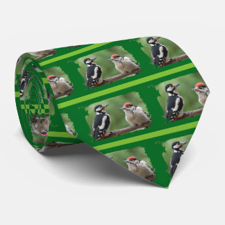 Multicolored woodpecker with new generation ~ tie