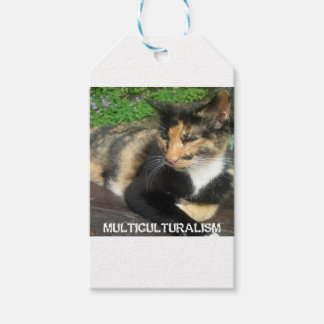 Multiculturalism Cat Pack Of Gift Tags