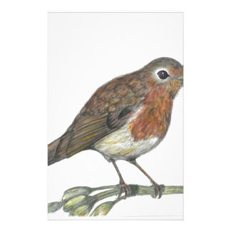 Multimedia Robin Stationery Paper