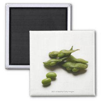 multiple green edamame beans with pea pod broken square magnet