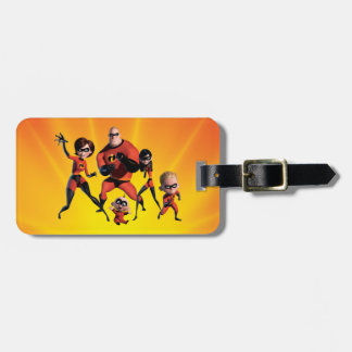 Multiple Luggage Tag