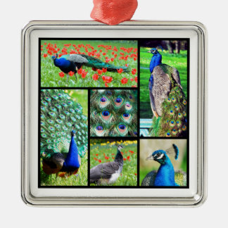 Multiple photos Indian peafowls Metal Ornament