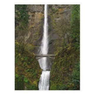 Multnomah Falls and Benson Footbridge Postcard