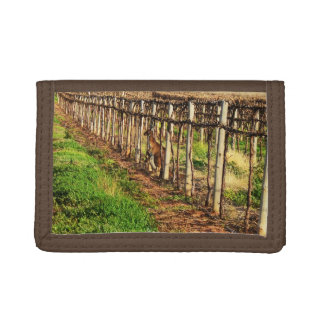 Mummy Kangaroo And Baby Hiding In Vines, Tri-fold Wallet
