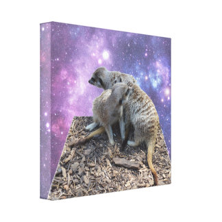 Mummy Meerkat And Her Pup, Dimensional Art, Canvas Print