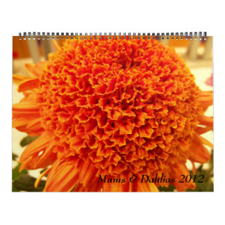 Mums & Dahlias 2012 Wall Calendars