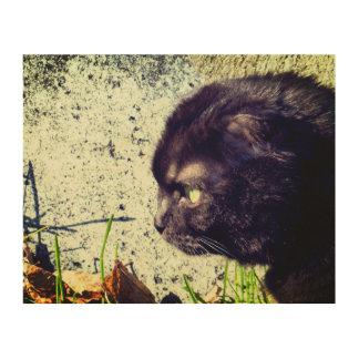 Munchkin Cat In The Sunlight Wood Wall Decor