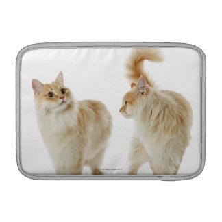 Munchkin cats MacBook sleeves