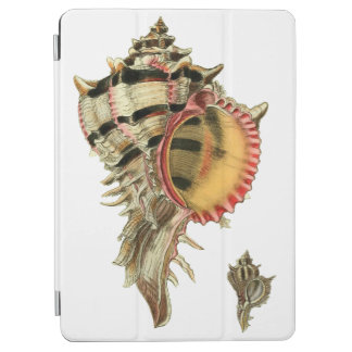 Murex sea shells vintage illustration iPad air cover