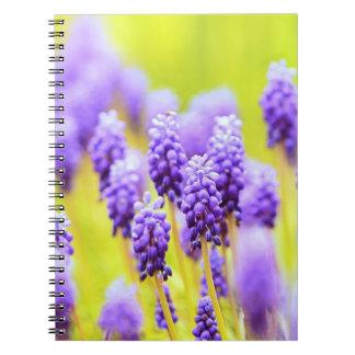 Muscari close-up notebook