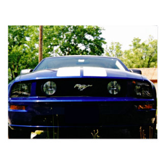 Muscle car- Shelby blue Postcard