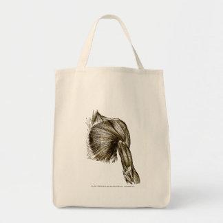 Muscles médicaux vintages d'illustration du coffre sac en toile épicerie